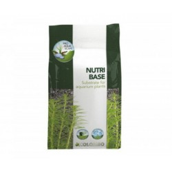NUTRI BASE COLOMBO - 5 L