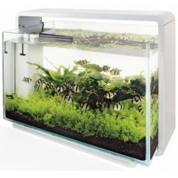 AQUARIUM SUPERFISH HOME 60 - 60 LITRES