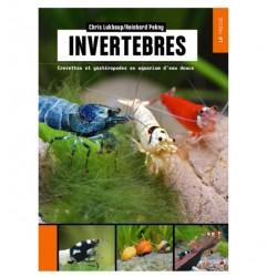 INVERTEBRES LR PRESSE