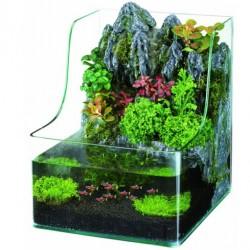 AQUARIUM SUPERFISH PLANTY 25