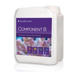 COMPONENT B AQUAFOREST 2000ML