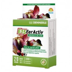 E15 FERACTIV DENNERLE 20 tablettes