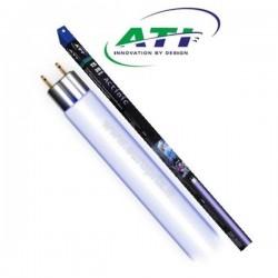TUBE ATI ACTINIC T5 - 24W - 55CM
