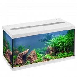 EHEIM AQUASTAR54 LED