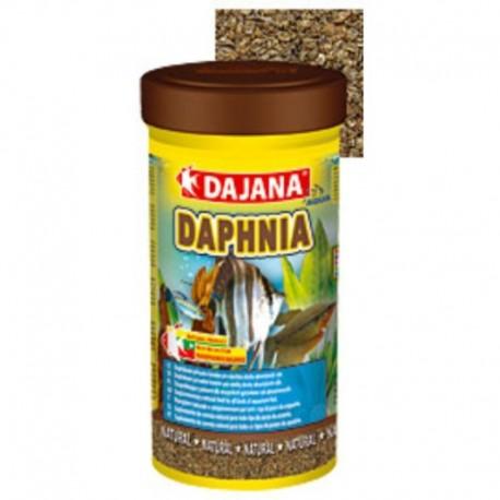 DAPHNIA DAJANA 250ml