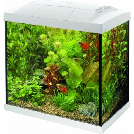 AQUA 30 LED TROPICAL KIT SUPERFISH - 30 litres
