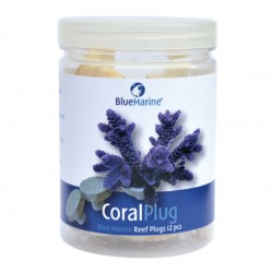 CORAL PLUG BLUE MARINE - 24 PIECES