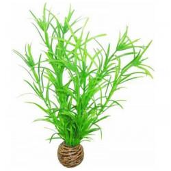 EASY PLANT SUPERFISH