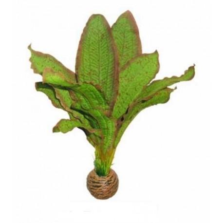 EASY PLANTS SUPERFISH 20cm ref A4070320
