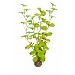 EASY PLANTS SUPERFISH 30cm ref A4070325